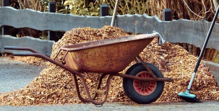 disadvantages of mulching