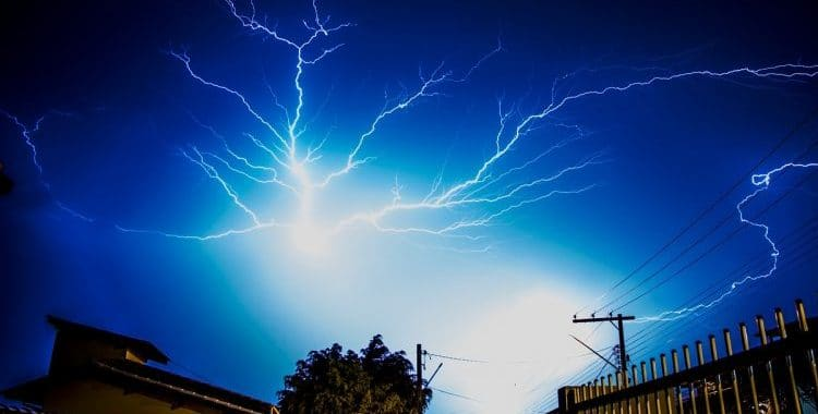 lightning in the garden
