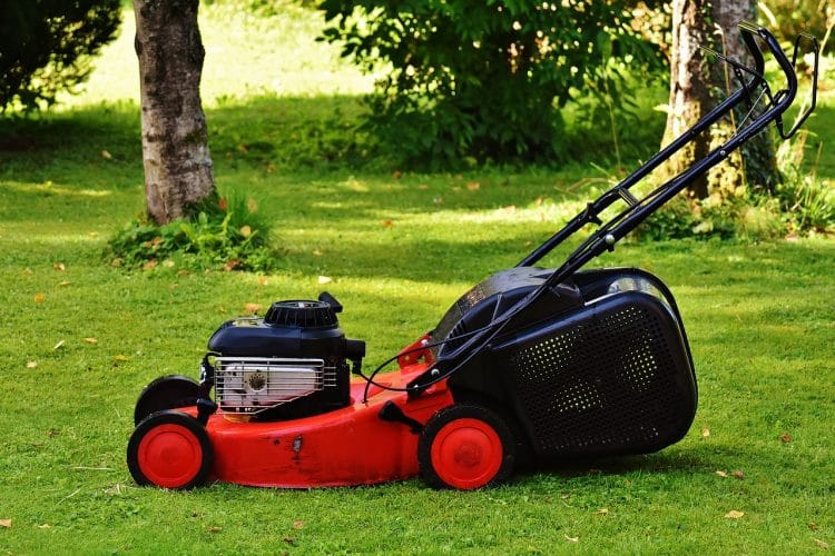 Grass cutting before lawn mowers