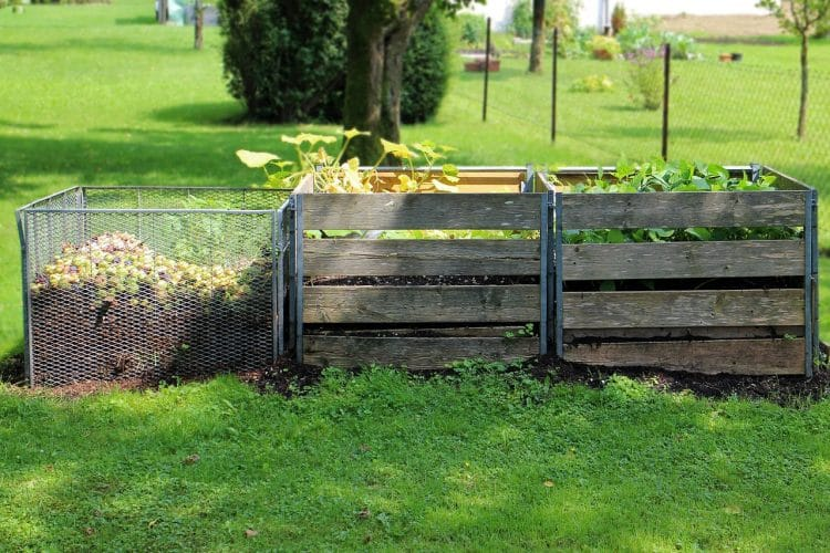 Is Compost Good For Lawns?
