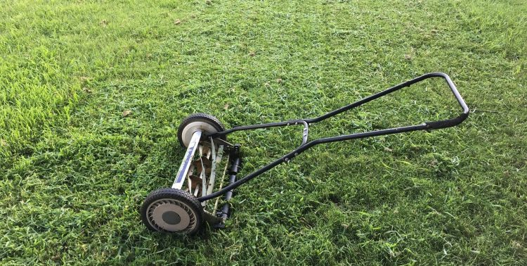 Reel Lawn Mowers: 15 Questions Answered