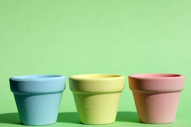 Where to recycle plant pots?