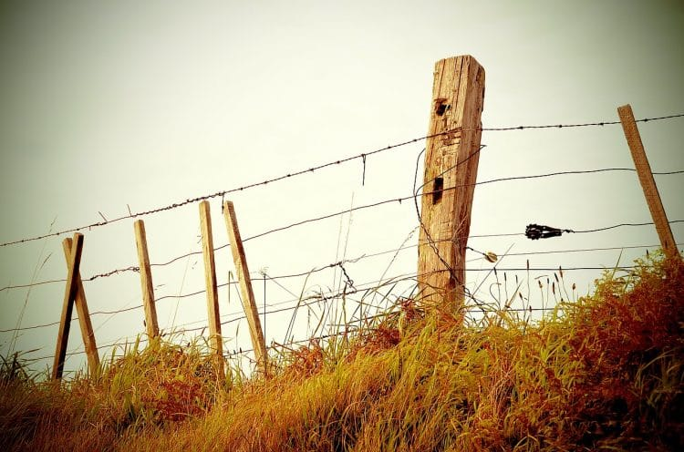 Recycling barbed wire fencing