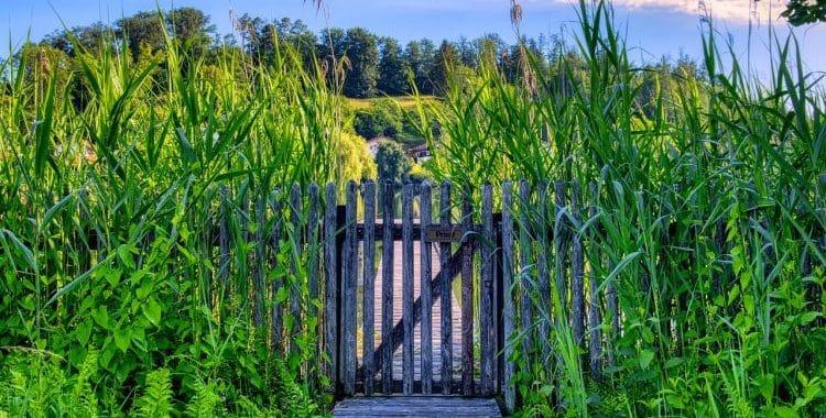 Are Garden Gates Standard Size?