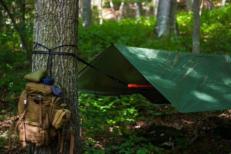 Tarp over hammock