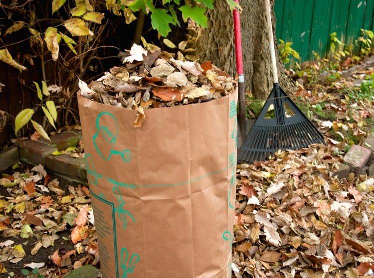 Bagging lawn sweepings