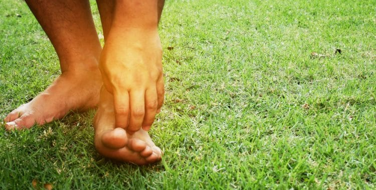 Why Does Grass Make Us Itch?