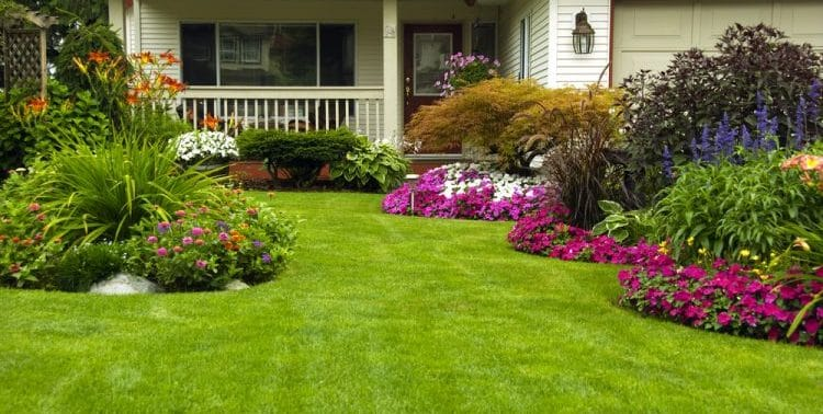 What Are Southern Lawns?