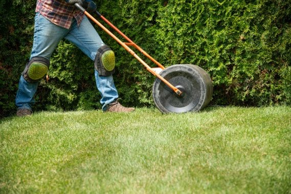 Do Lawn Rollers Work?