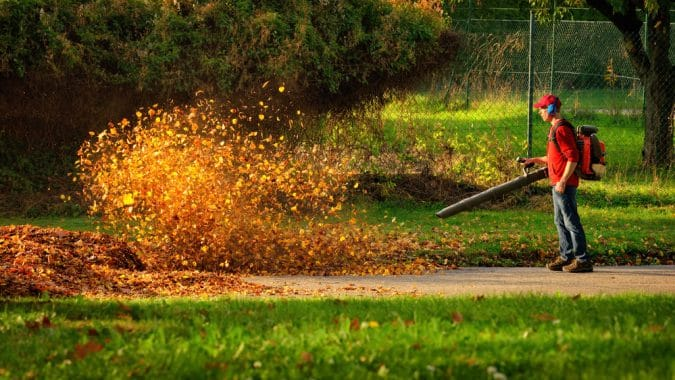 Where Are Leaf Blowers Illegal?