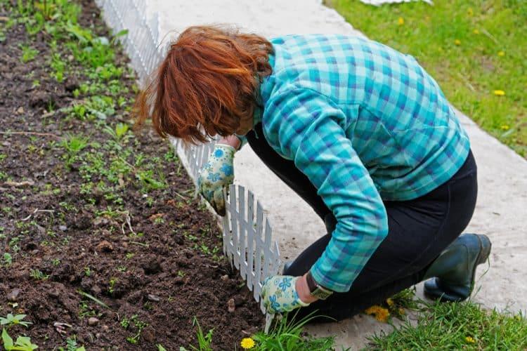 September planting
