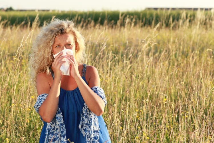 Grass hay fever
