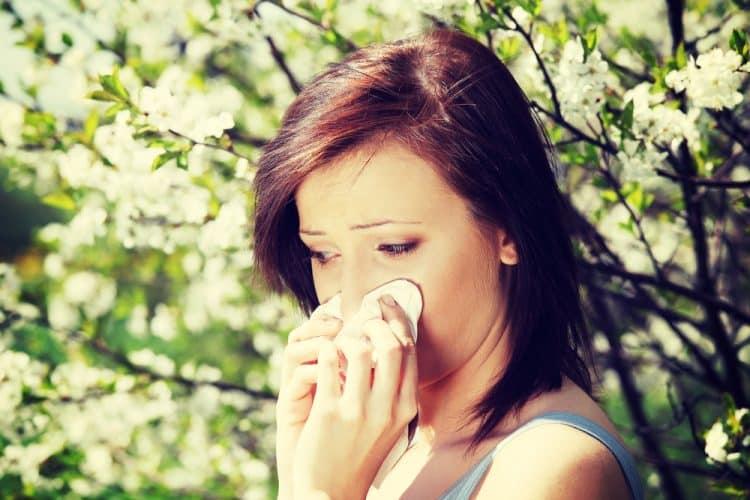 Tree Pollen Allergy Season