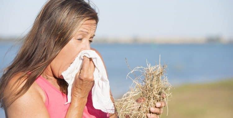 Grass Hay Fever Season