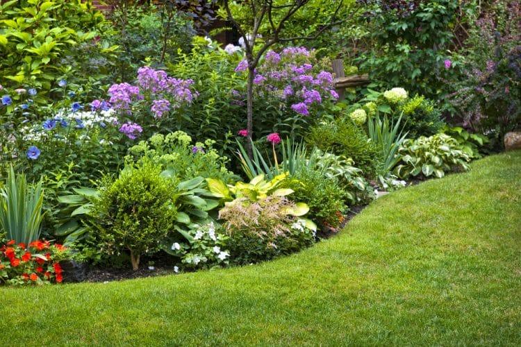 July planting
